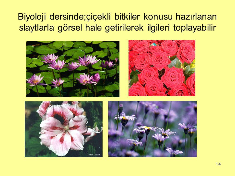 Biyoloji dersinde;çiçekli bitkiler konusu hazırlanan slaytlarla görsel hale getirilerek ilgileri toplayabilir