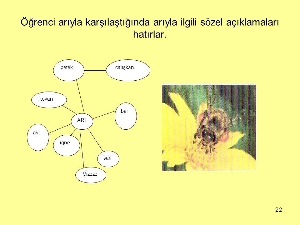 Öğrenci arıyla karşılaştığında arıyla ilgili sözel açıklamaları hatırlar.
