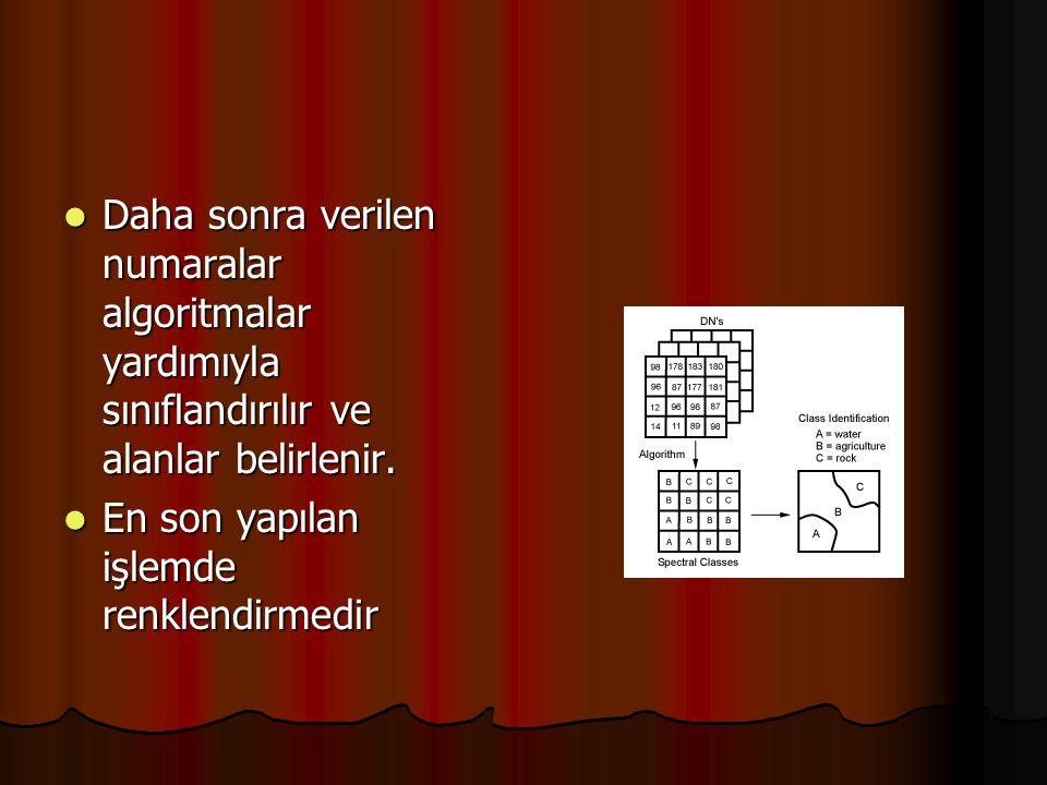 Daha sonra verilen numaralar algoritmalar yardımıyla sınıflandırılır ve alanlar belirlenir.