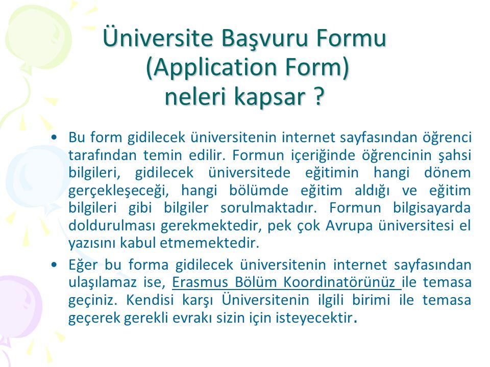 Üniversite Başvuru Formu (Application Form) neleri kapsar