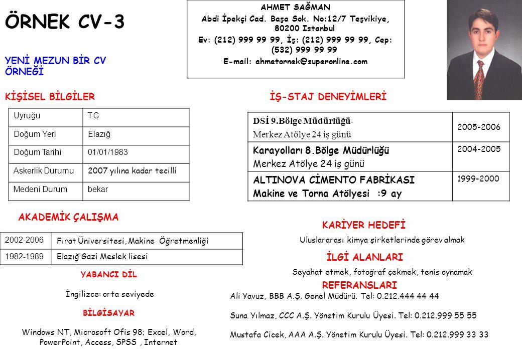 ÖRNEK CV-4 KİŞİSEL BİLGİLER AKADEMİK ÇALIŞMA İŞ DENEYİMİ