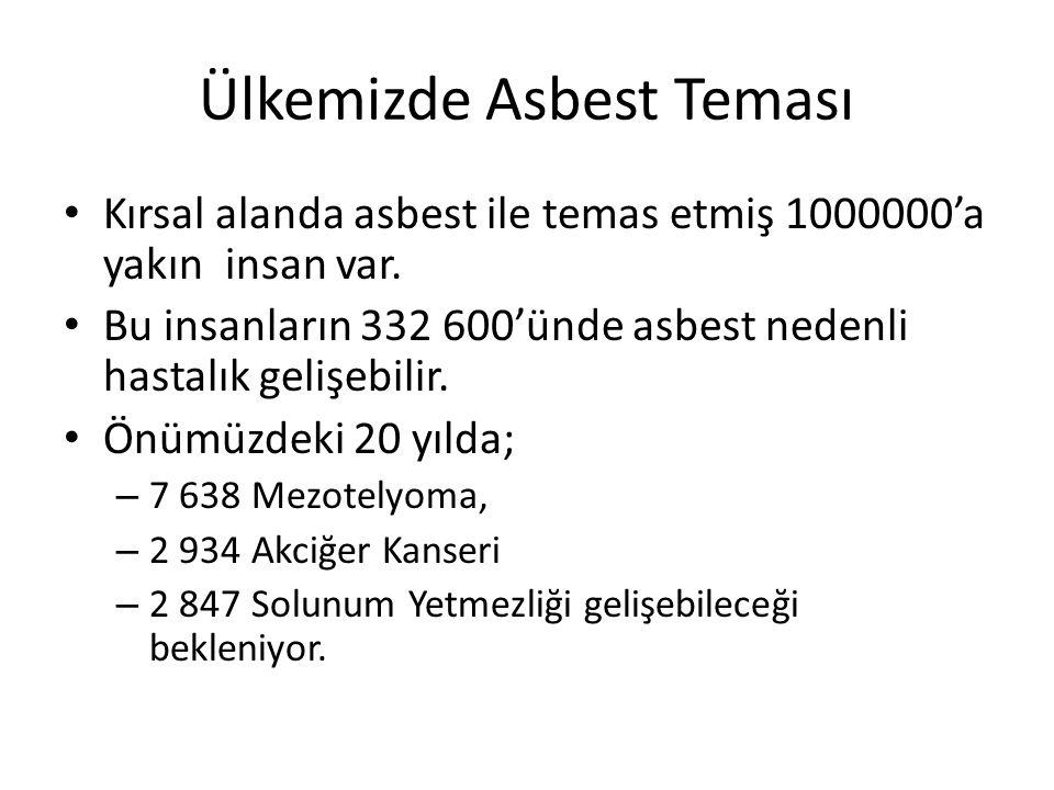 Ülkemizde Asbest Teması