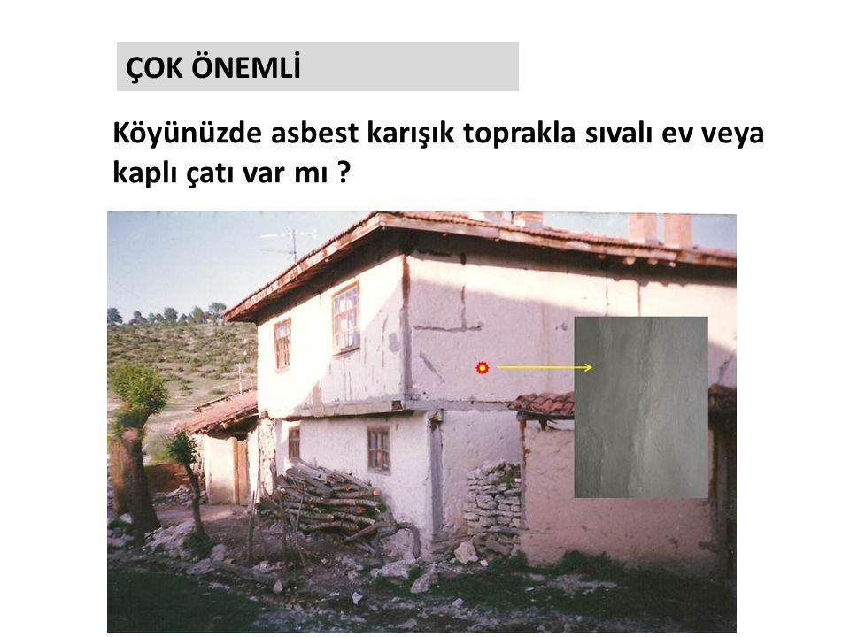 Köyünüzde asbest karışık toprakla sıvalı ev veya kaplı çatı var mı