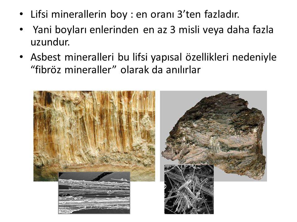 Lifsi minerallerin boy : en oranı 3'ten fazladır.