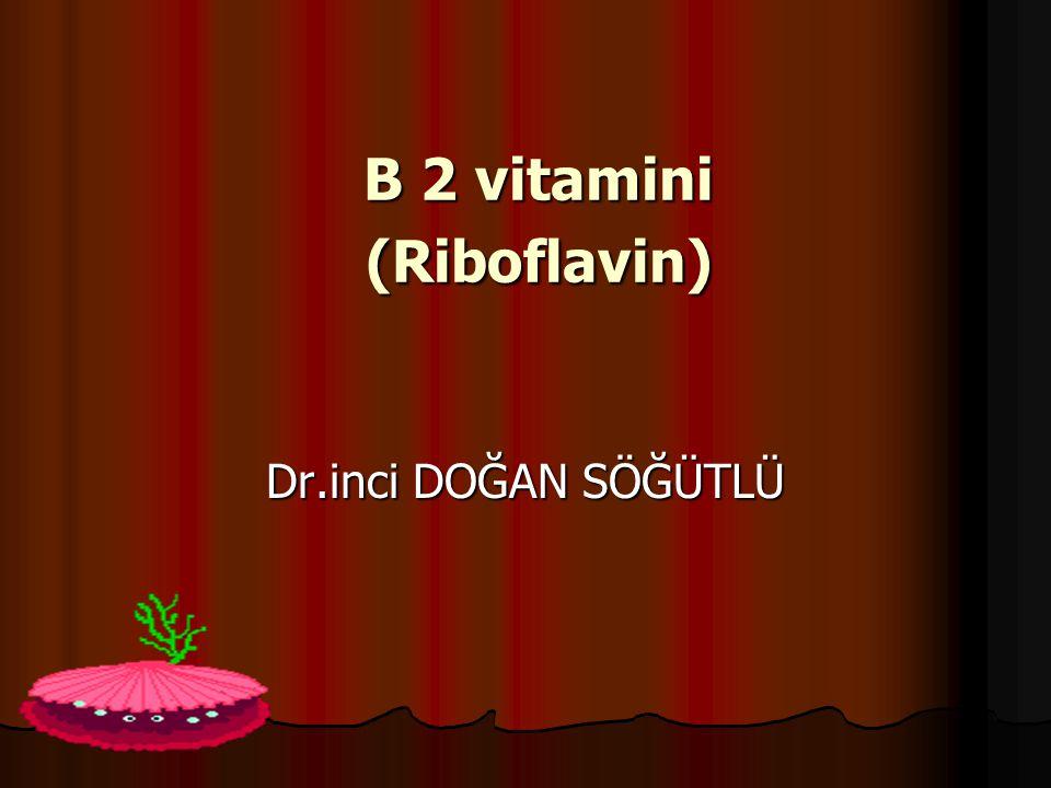 B 2 vitamini (Riboflavin)