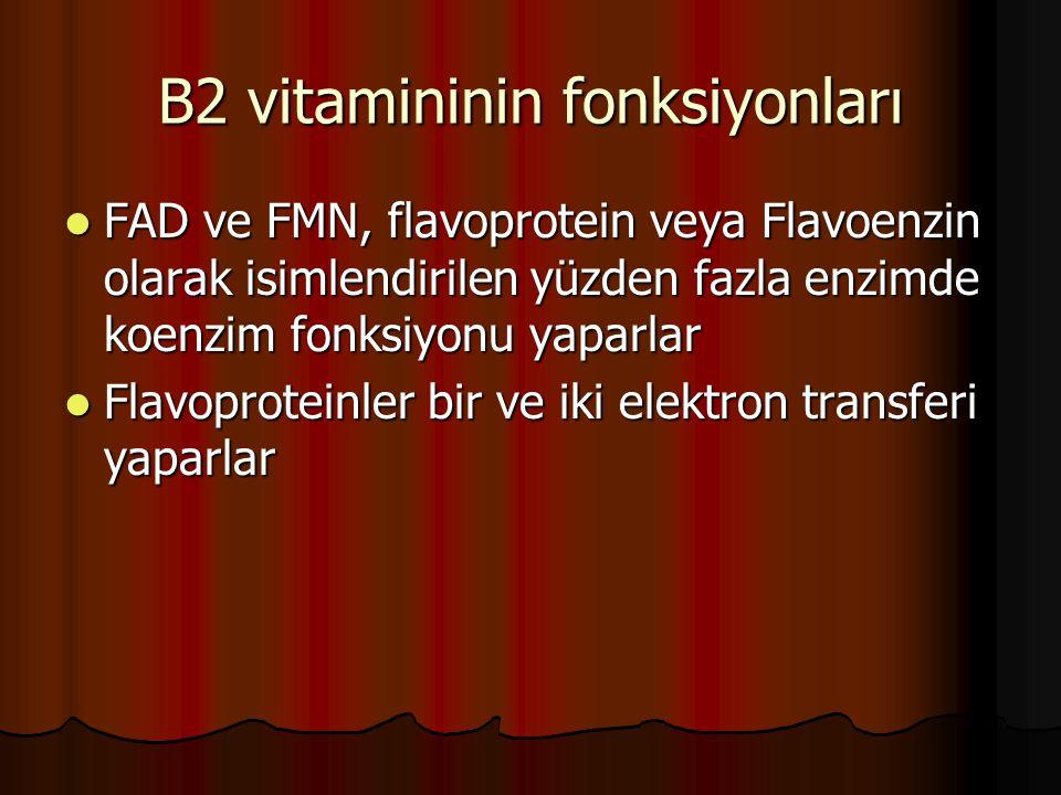 B2 vitamininin fonksiyonları