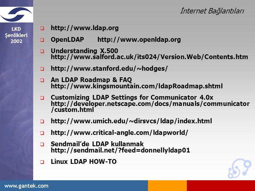 İnternet Bağlantıları