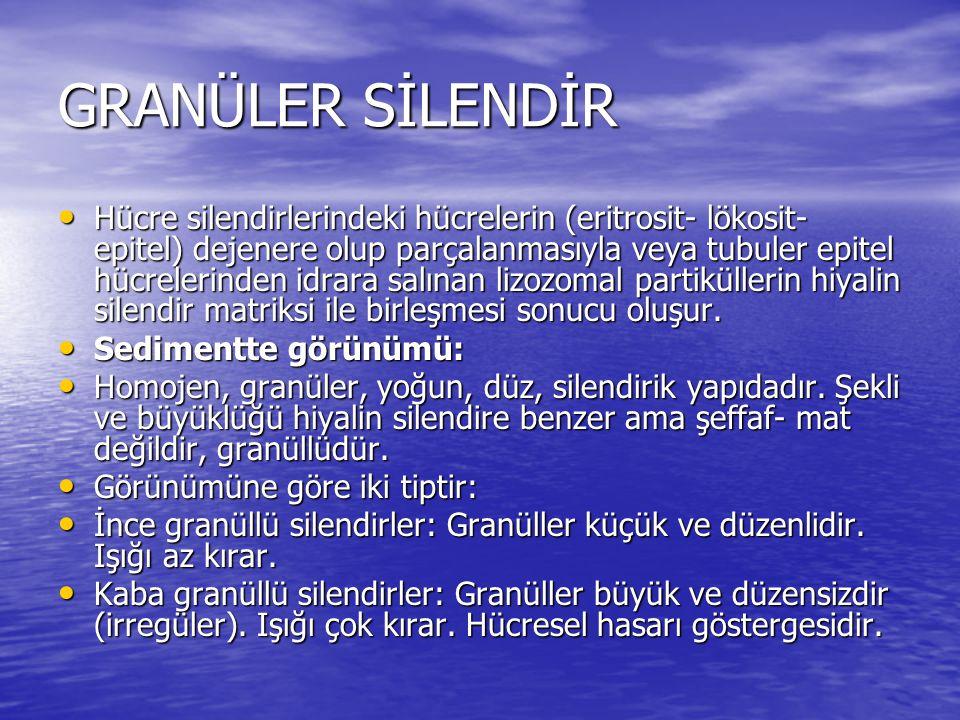 GRANÜLER SİLENDİR