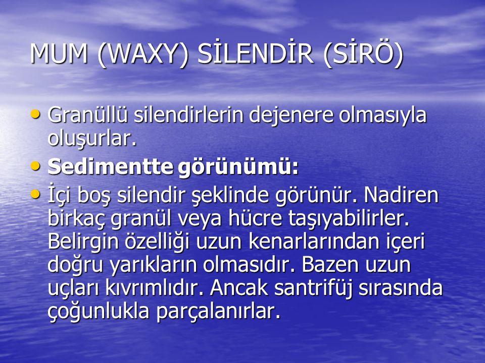 MUM (WAXY) SİLENDİR (SİRÖ)
