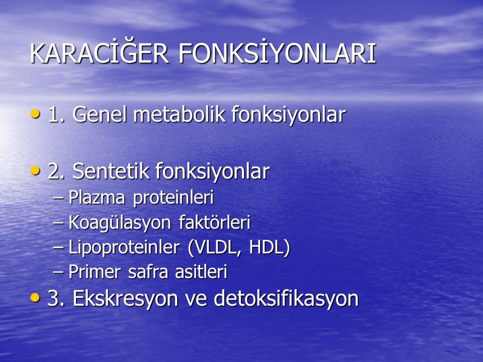 KARACİĞER FONKSİYONLARI