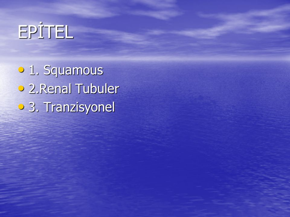 EPİTEL 1. Squamous 2.Renal Tubuler 3. Tranzisyonel
