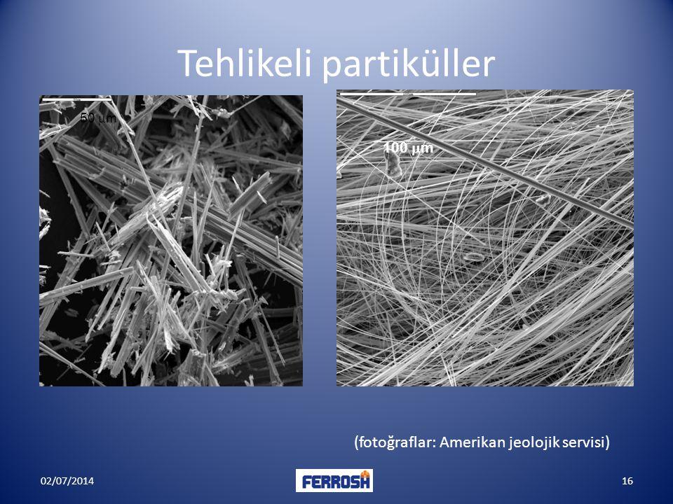 Tehlikeli partiküller