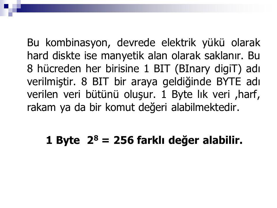 1 Byte 28 = 256 farklı değer alabilir.