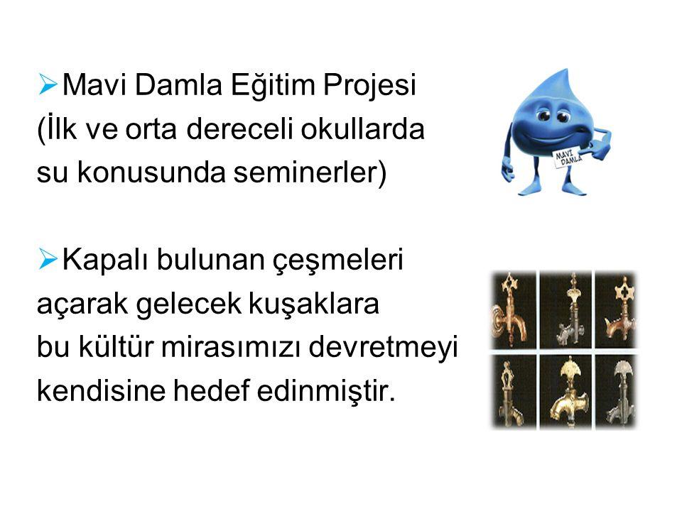 Mavi Damla Eğitim Projesi