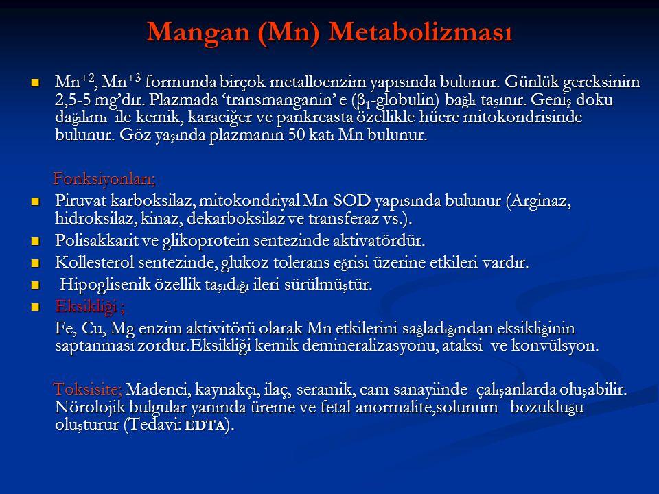 Mangan (Mn) Metabolizması