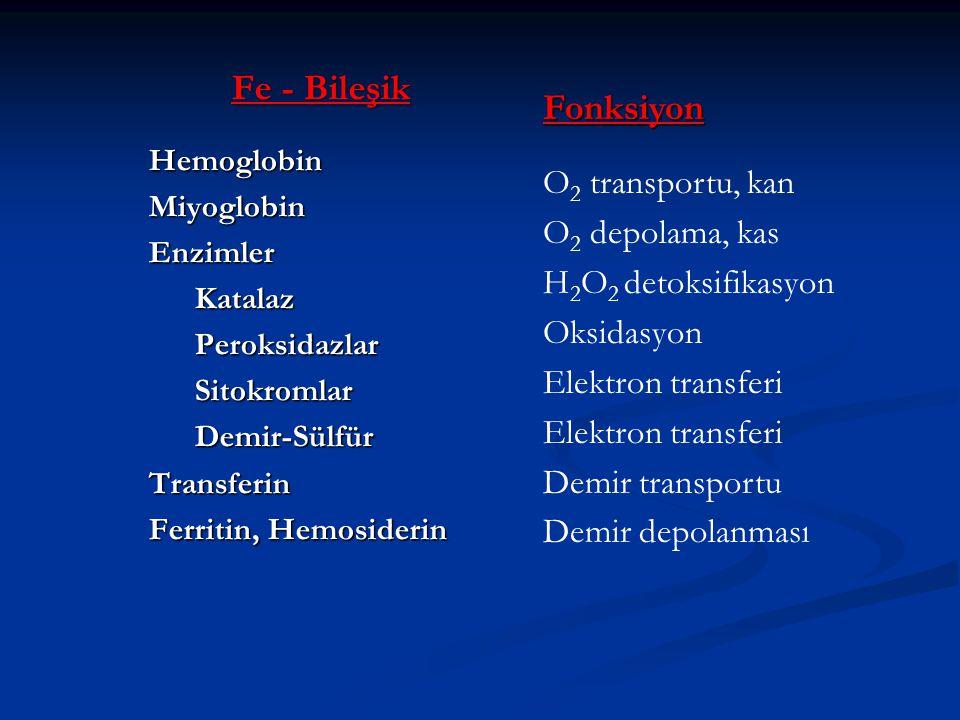 Fe - Bileşik Fonksiyon O2 transportu, kan O2 depolama, kas