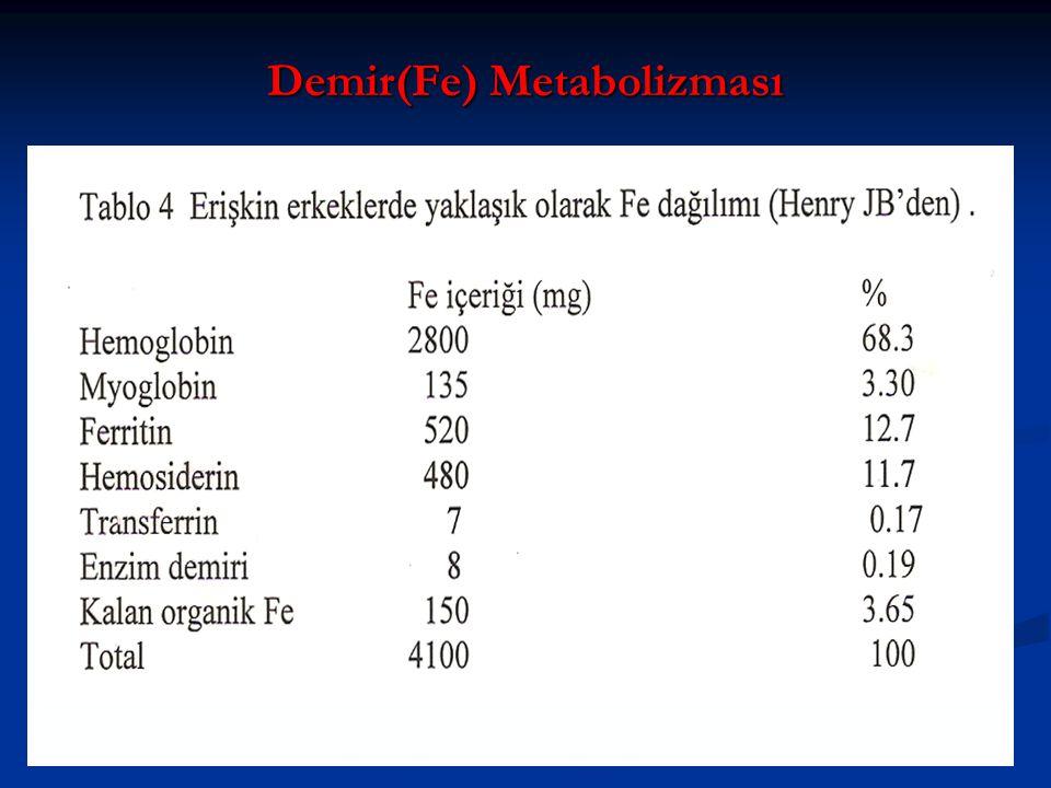 Demir(Fe) Metabolizması
