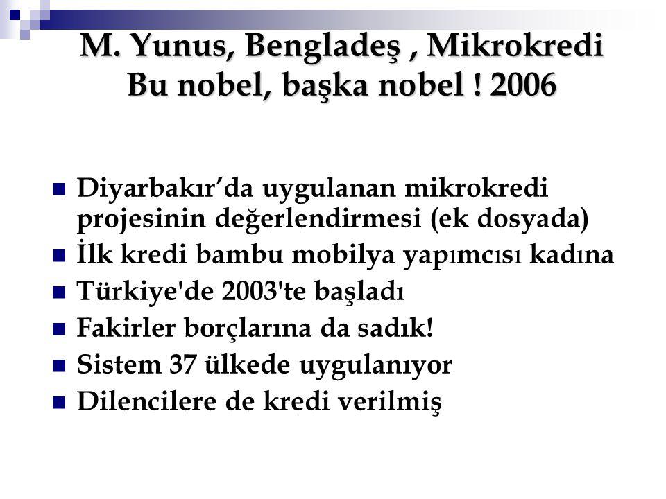 M. Yunus, Bengladeş , Mikrokredi Bu nobel, başka nobel ! 2006