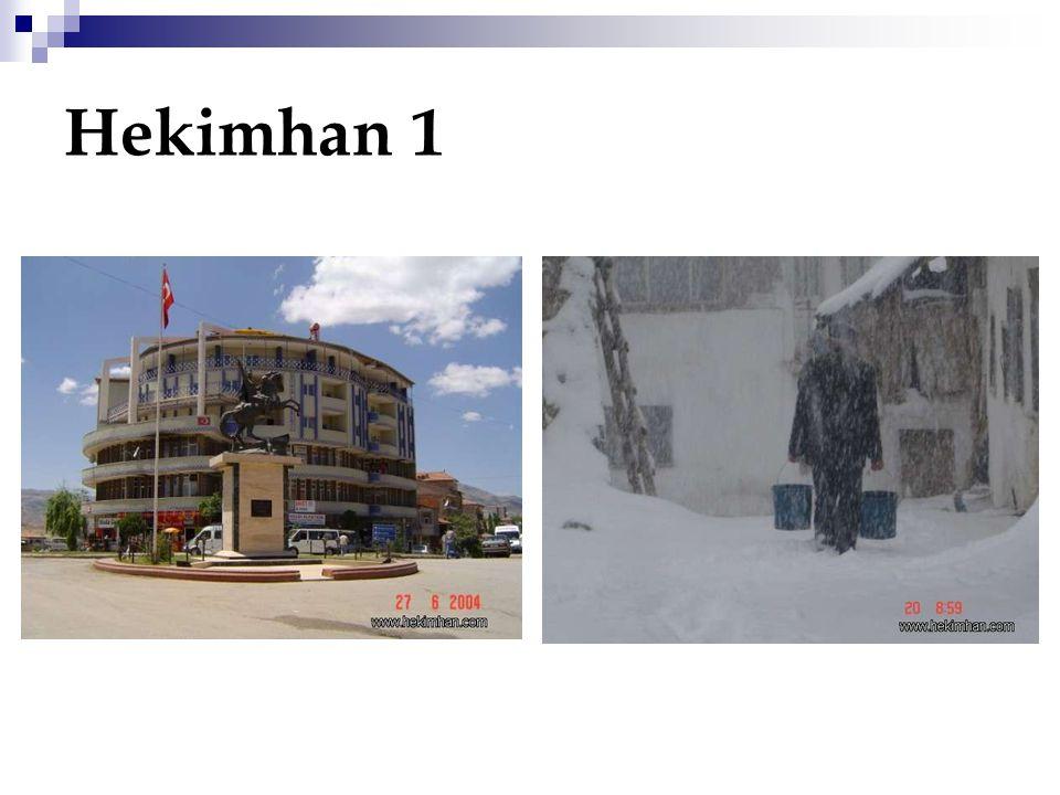 Hekimhan 1