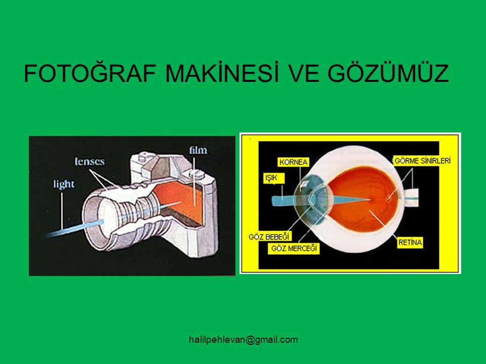 FOTOĞRAF MAKİNESİ VE GÖZÜMÜZ
