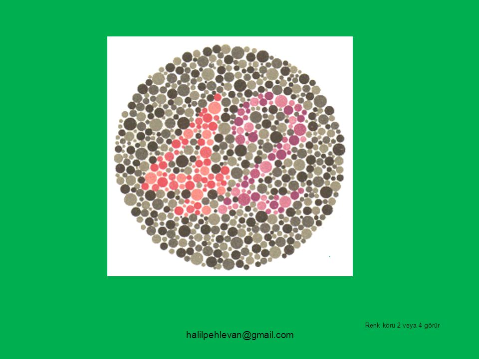 Renk körü 2 veya 4 görür halilpehlevan@gmail.com