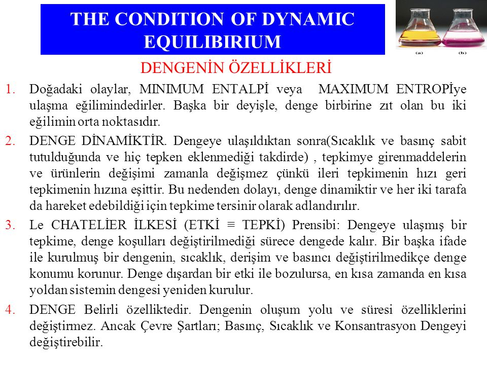 THE CONDITION OF DYNAMIC EQUILIBIRIUM