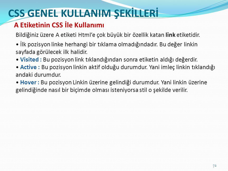 CSS GENEL KULLANIM ŞEKİLLERİ