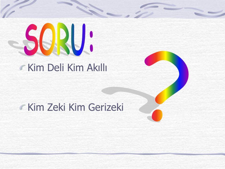 SORU: Kim Deli Kim Akıllı Kim Zeki Kim Gerizeki