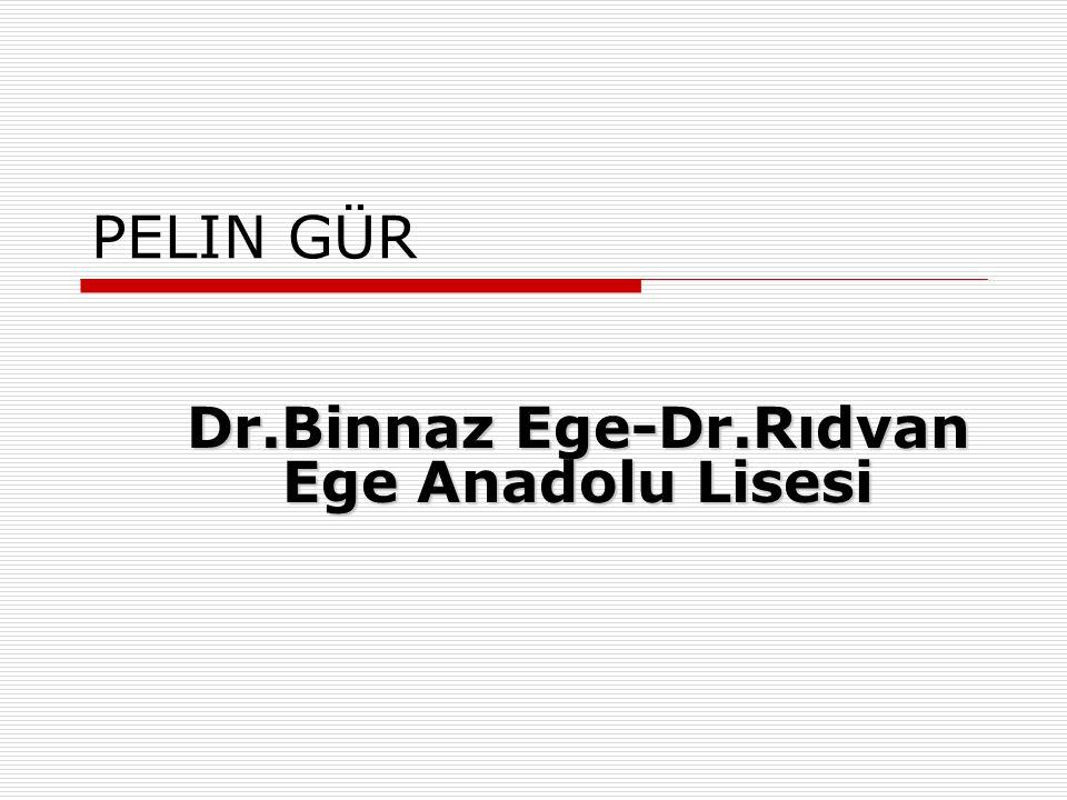 Dr.Binnaz Ege-Dr.Rıdvan Ege Anadolu Lisesi