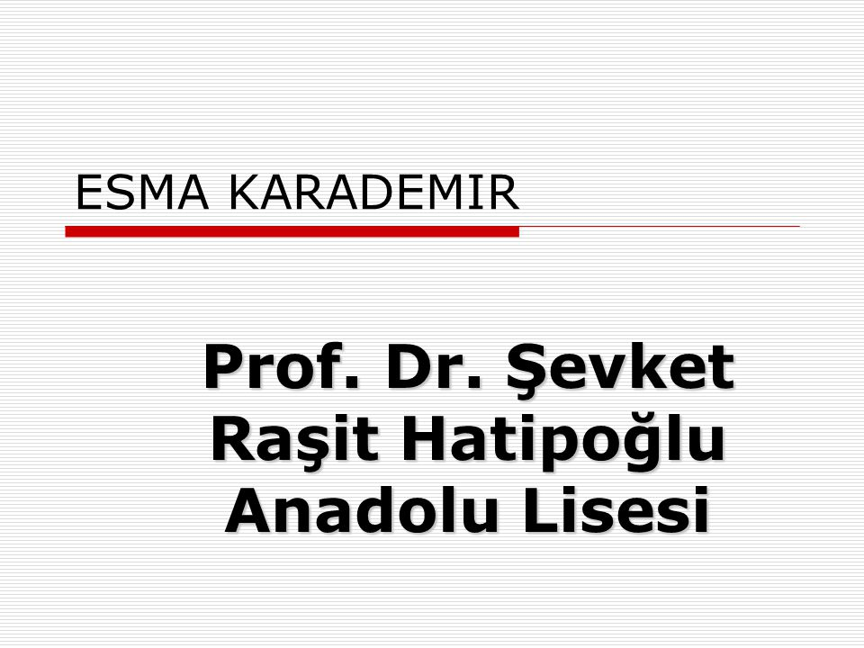 Prof. Dr. Şevket Raşit Hatipoğlu Anadolu Lisesi