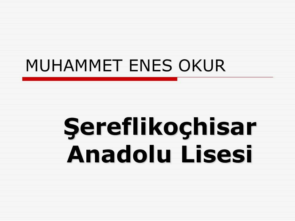 Şereflikoçhisar Anadolu Lisesi