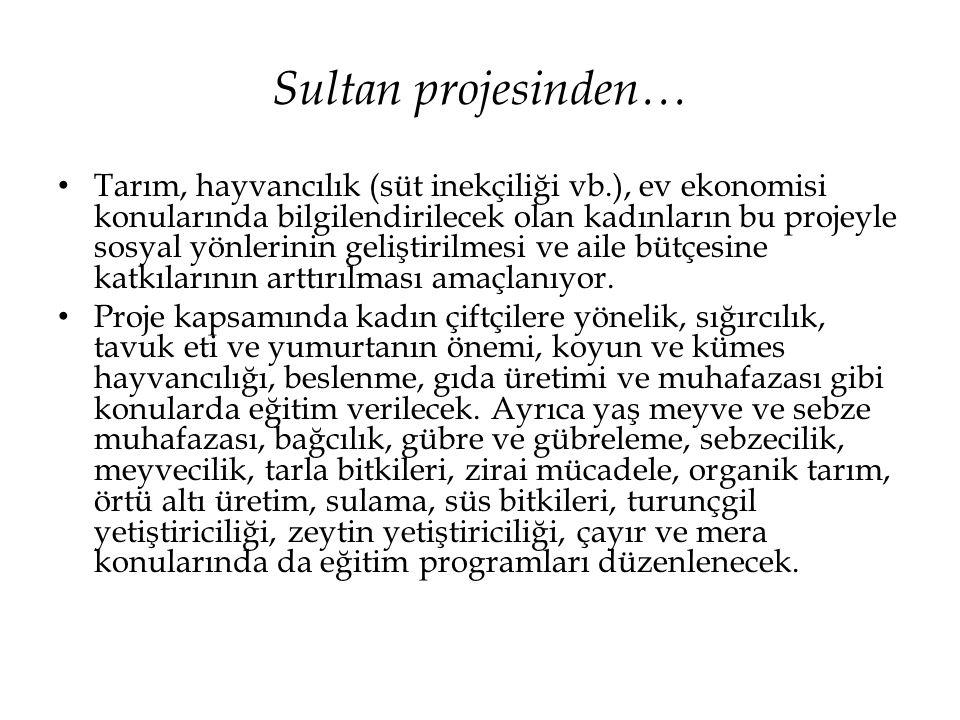 Sultan projesinden…