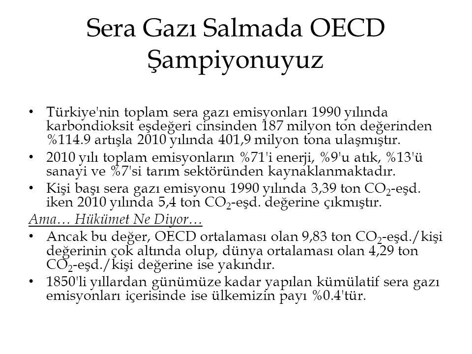 Sera Gazı Salmada OECD Şampiyonuyuz