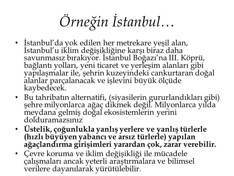 Örneğin İstanbul…