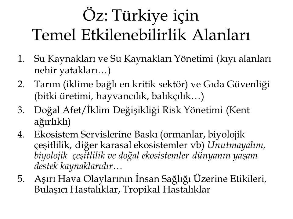 Öz: Türkiye için Temel Etkilenebilirlik Alanları
