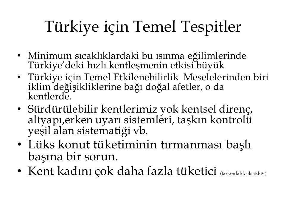 Türkiye için Temel Tespitler