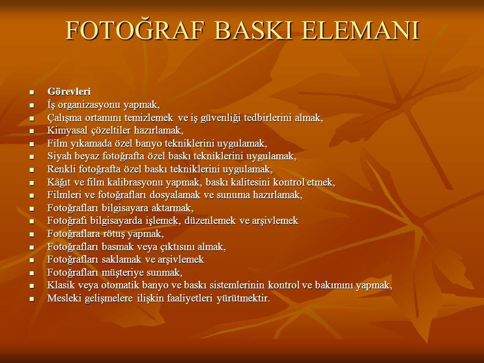FOTOĞRAF BASKI ELEMANI
