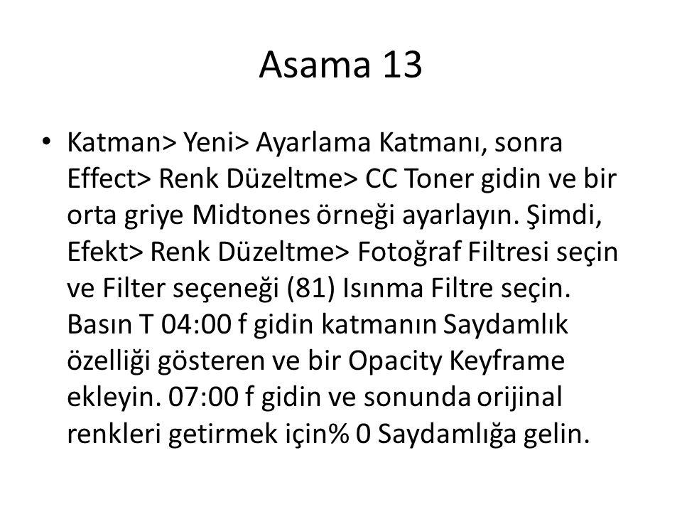 Asama 13