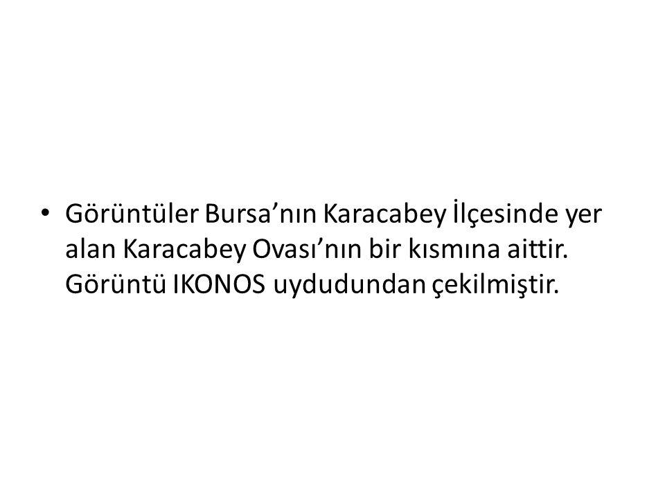 Görüntüler Bursa'nın Karacabey İlçesinde yer alan Karacabey Ovası'nın bir kısmına aittir.