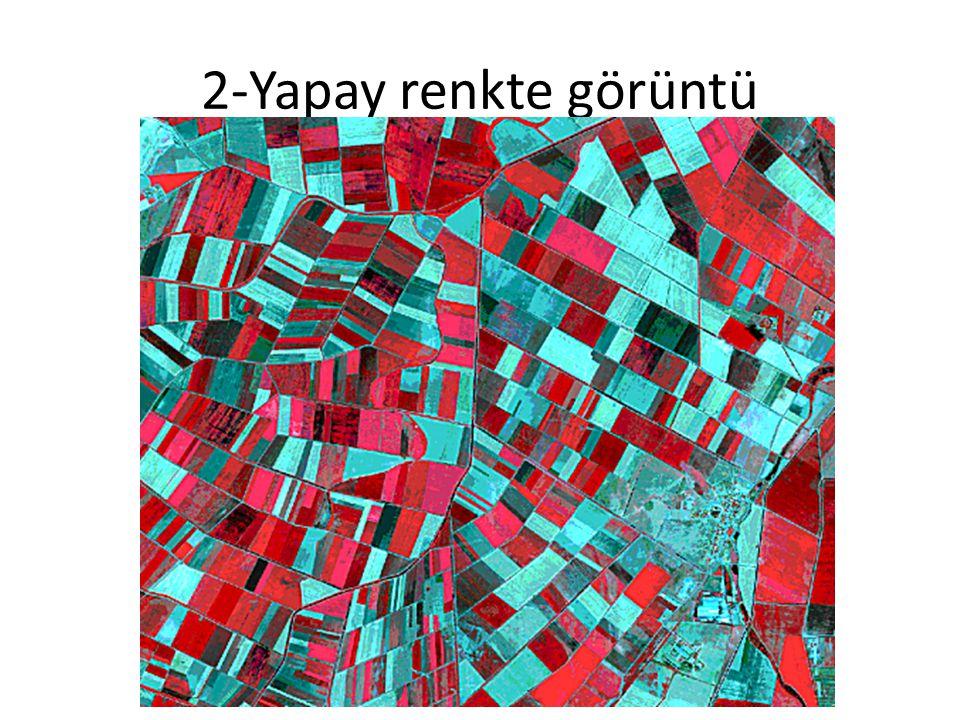 2-Yapay renkte görüntü