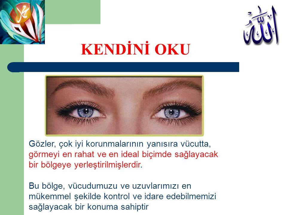 KENDİNİ OKU Gözler, çok iyi korunmalarının yanısıra vücutta,