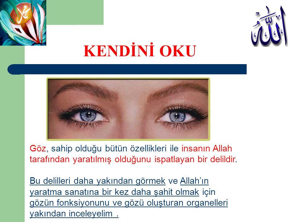 KENDİNİ OKU Göz, sahip olduğu bütün özellikleri ile insanın Allah