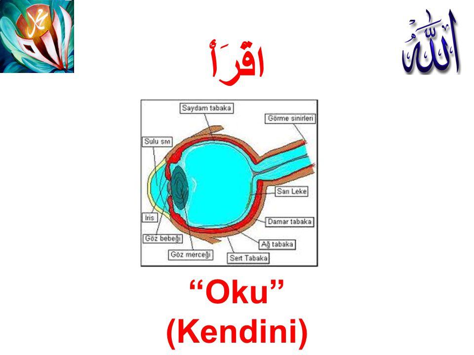 اقْرَأْ Oku (Kendini)