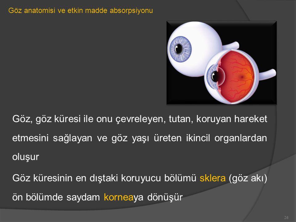 Göz anatomisi ve etkin madde absorpsiyonu