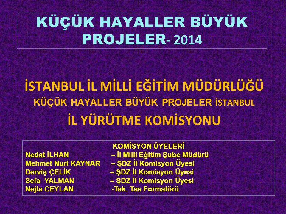 KÜÇÜK HAYALLER BÜYÜK PROJELER- 2014