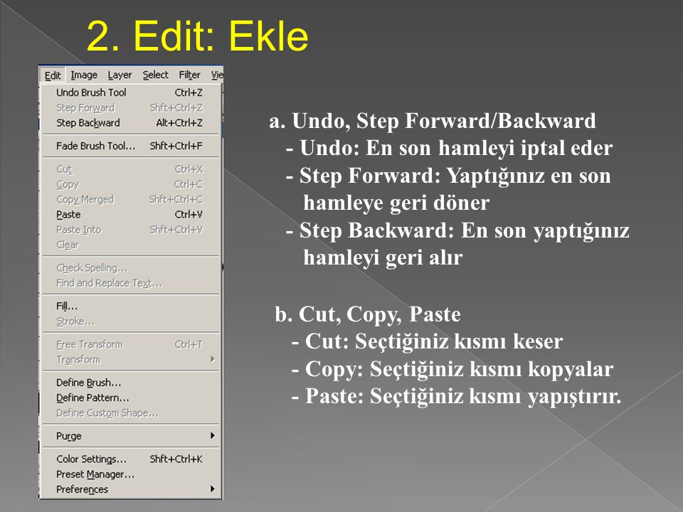 2. Edit: Ekle a. Undo, Step Forward/Backward
