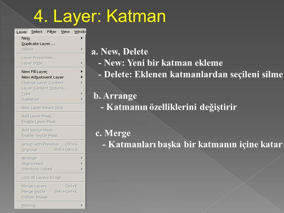 4. Layer: Katman a. New, Delete - New: Yeni bir katman ekleme