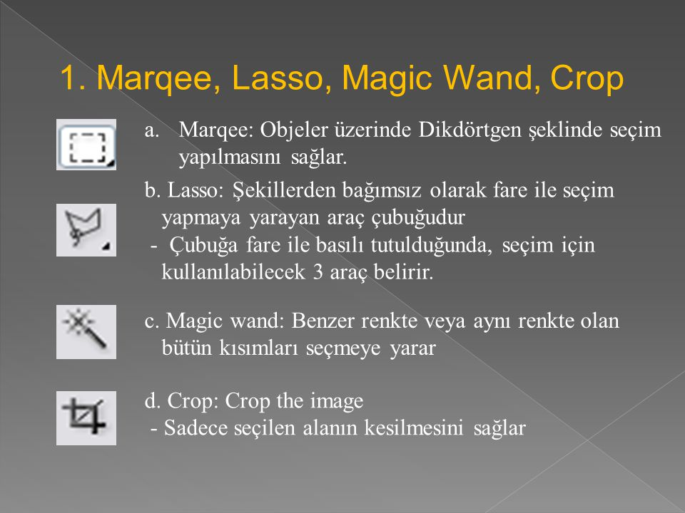 1. Marqee, Lasso, Magic Wand, Crop
