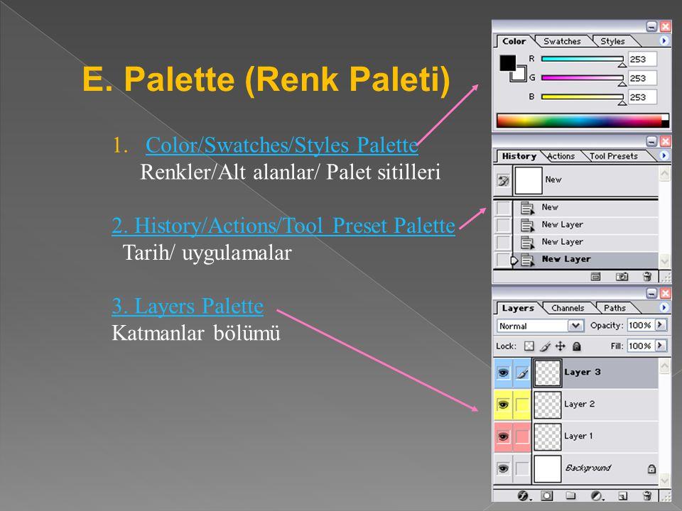 E. Palette (Renk Paleti)