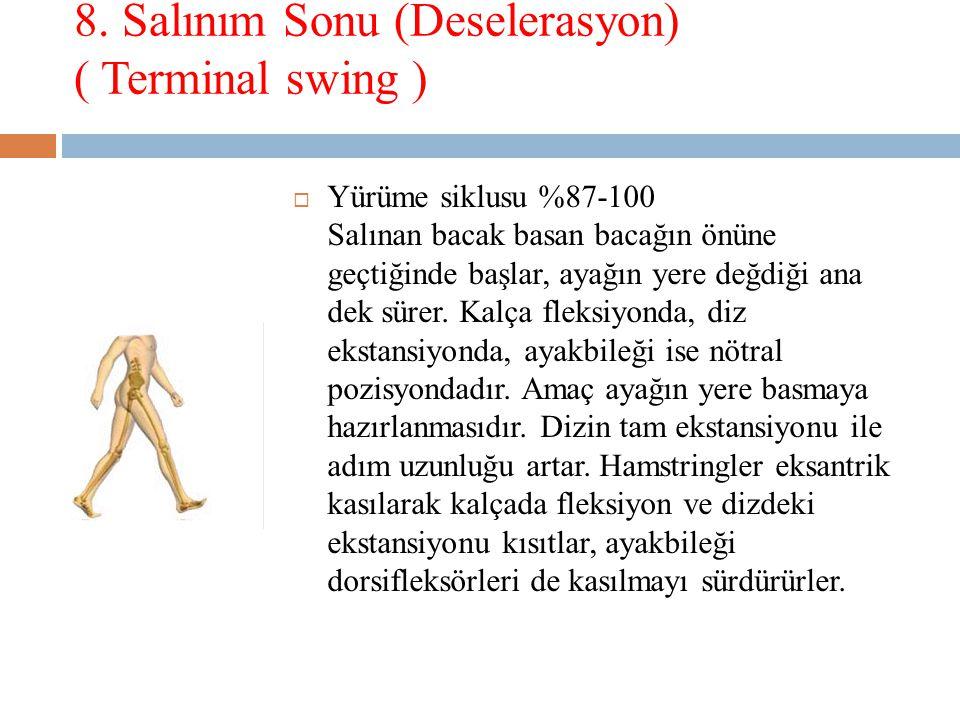8. Salınım Sonu (Deselerasyon) ( Terminal swing )